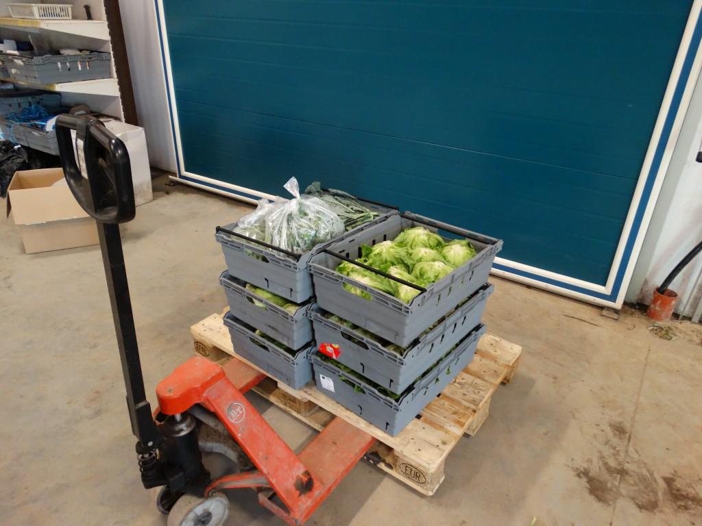 Inköpta grönsaker