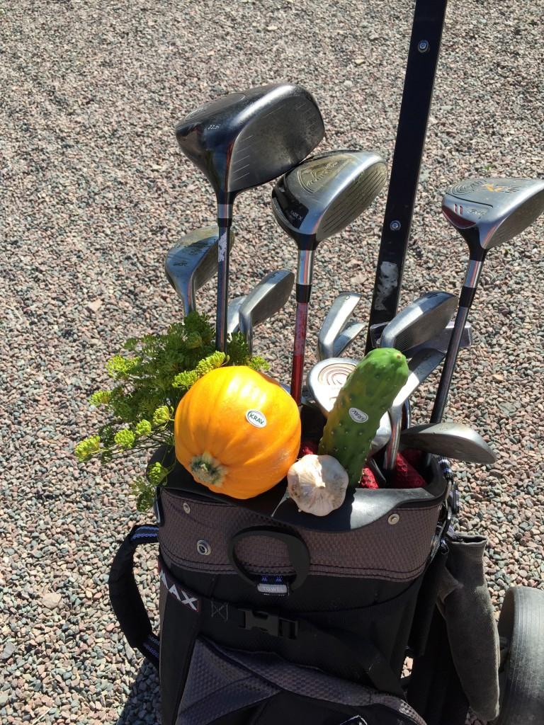 Värpinge_golf